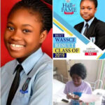 😭😭17-year-old Teenager who got 7 A1S in all subjects in 2019 WAEC dies
